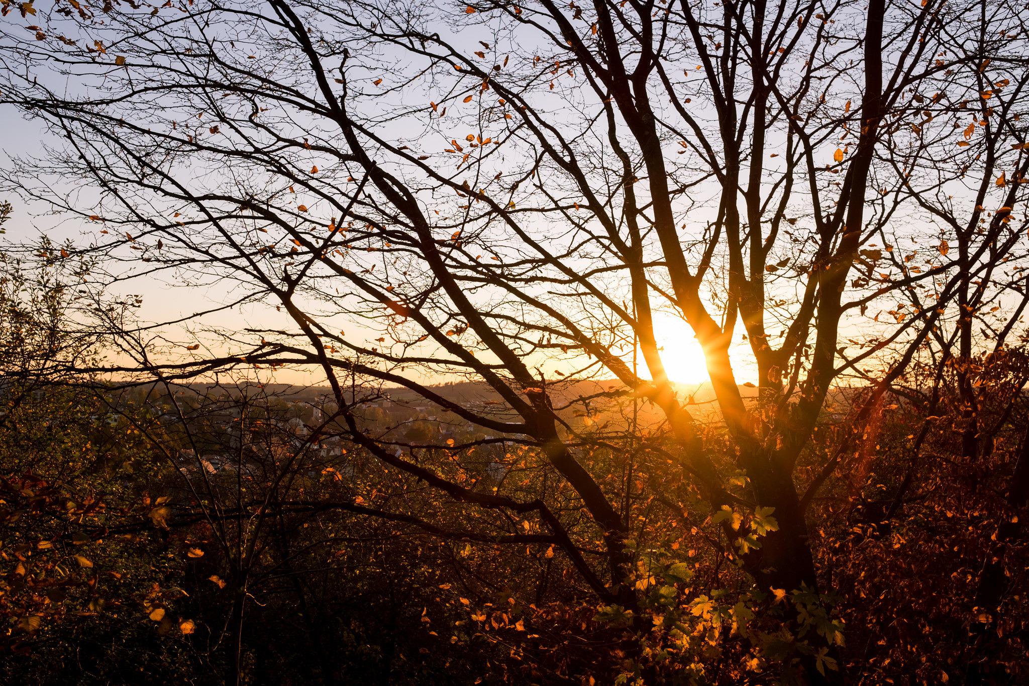 Goldener Herbst in Ellwangen - Symbolischer und endgültiger Abschied vom Sommer 2017
